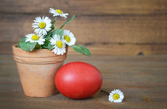 Easter egg and daisies in clay pot Royalty Free Stock Photography