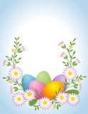 Easter egg with daisy Stock Photos