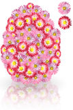 Easter-egg-daisy. Flowers egg, white and pink daisies Stock Photo