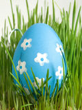 Easter egg and daisy Stock Photo