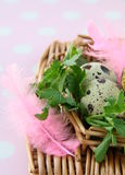 Easter egg decorating Stock Photo