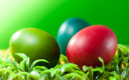 Easter egg decorating the bright day Stock Images