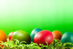 Easter egg decorating the bright day Royalty Free Stock Images