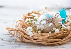 Easter egg decoration. Easter egg in nest, spring flowers,natural light, rustic table.Easter rustic decoration stock photo
