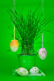 Easter egg decorations Stock Photography
