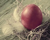 Easter egg in a decorative nest with feathers on old wooden background Stock Image