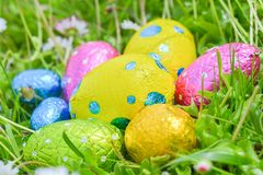 Easter egg deposited on the prairie grass Royalty Free Stock Image