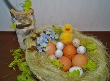 Easter egg - Easter decoration Stock Image