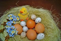 Easter egg - Easter decoration Stock Photography