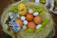 Easter egg - Easter decoration Stock Photo