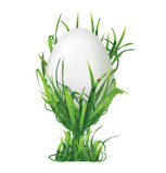 Easter egg and egg cup of grass isolated on white background. Ve Royalty Free Stock Image