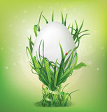 Easter egg and egg cup of grass Royalty Free Stock Photo