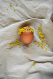 Easter egg with face and mimosa wreath lying on linen fabric Royalty Free Stock Image