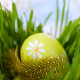 Easter egg with a feather Royalty Free Stock Image