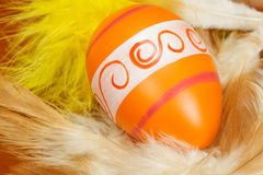 Easter egg in feather nest Stock Photography