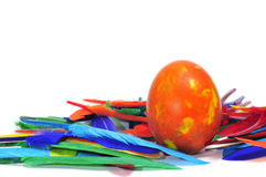 Easter egg and feathers Stock Images