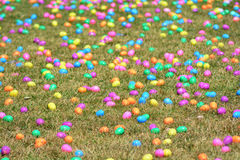 Easter Egg Field Stock Photography