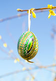 Easter egg on floral branch Stock Images