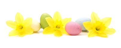 Easter egg and flower border Stock Image