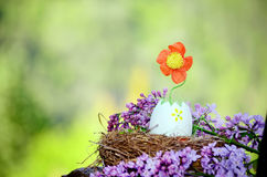 Easter Egg with flower growing from it Royalty Free Stock Image