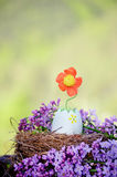 Easter Egg with flower growing from it Royalty Free Stock Photography