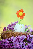 Easter Egg with flower growing from it Stock Images