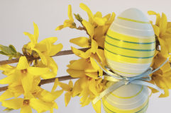Easter egg with flower. Easter egg with yellow flower and reflection stock images