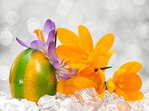 Easter egg with flowers Royalty Free Stock Photography