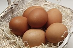 Easter egg food and ritual symbol. Easter eggs in Christianity symbol of the coffin and resurrection of several eggs in a basket with wood shavings royalty free stock photography