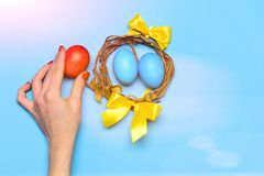 Female hand holding colorful easter eggs in wreath with ribbon. Easter egg. funny holiday bunny rabbit and eggs wooden twig wreath with colorful handmade painted royalty free stock photography