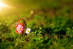 Beautiful traditional painted Easter egg in the garden Royalty Free Stock Image
