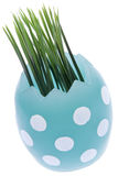 Easter Egg with Grass Royalty Free Stock Images
