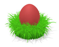Easter egg in grass. 3d illustration of a red easter egg in a tuft of grass Stock Photos