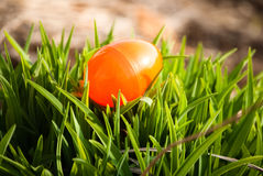 Easter egg in grass Stock Photography