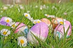 Easter egg in the grass Royalty Free Stock Photography