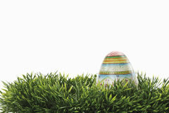 Easter egg in grass Stock Image