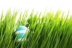 Easter Egg in grass Stock Image