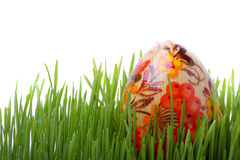 Easter egg in the grass isolated on white Stock Images