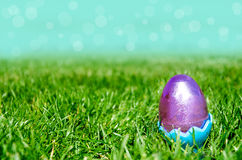Easter egg on the grass and sky background Royalty Free Stock Photography