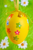 Easter Egg on green Royalty Free Stock Images