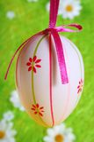 Easter Egg on green Royalty Free Stock Photography
