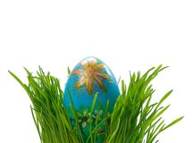Easter egg in green grass Royalty Free Stock Photos