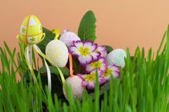 Easter egg in green grass Stock Image