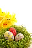 Easter egg on green grass background Royalty Free Stock Images