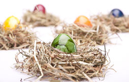 Easter egg green nest white Stock Images
