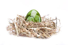 Easter egg green nest white Royalty Free Stock Photo