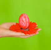 Easter egg hand Royalty Free Stock Photo