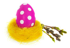 Easter egg hand painted in yellow bird`s nest with blooming twig Royalty Free Stock Photos