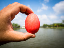 Easter egg in hand. On sky background Royalty Free Stock Images