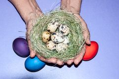 Easter egg in the hands of an elderly person Royalty Free Stock Photography